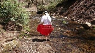 小川で水遊びの写真・画像素材[3898870]