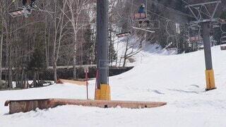 スポーツ,雪,屋外,樹木,スキー,スノーボード,覆う,ボードスポーツ