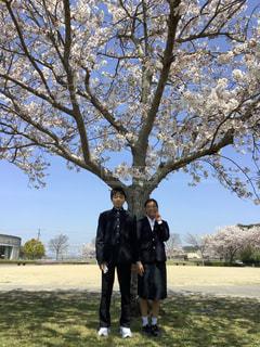入学式の記念撮影の写真・画像素材[3379807]