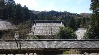 永平寺の写真・画像素材[3358737]