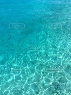 海の写真・画像素材[3352204]