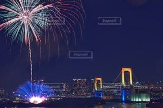 夜景と花火の写真・画像素材[4666864]