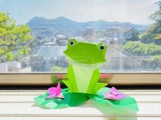 折り紙カエルの写真・画像素材[3361638]