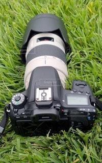内馬場からの眺めの写真・画像素材[3382639]