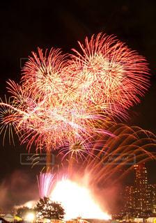 空に花火の写真・画像素材[1310551]