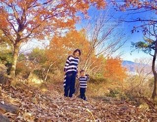 紅葉狩りの写真・画像素材[3732430]