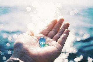 海の宝物の写真・画像素材[3351632]