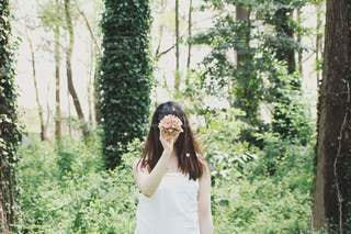 森の中の写真・画像素材[3407101]