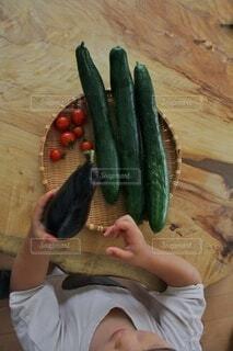 自家栽培野菜の写真・画像素材[3699362]
