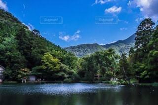 金鱗湖の写真・画像素材[3407186]