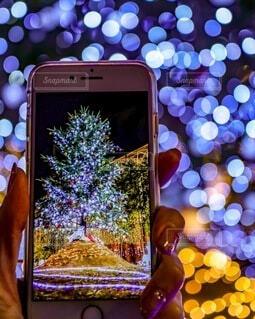 スマホ越しのクリスマスツリーの写真・画像素材[3977308]