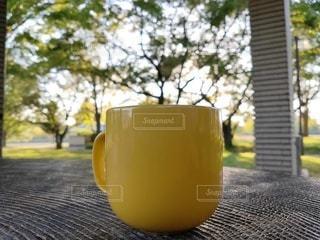 マグカップと自然の写真・画像素材[3381468]