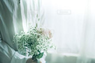 花束を。の写真・画像素材[3369454]