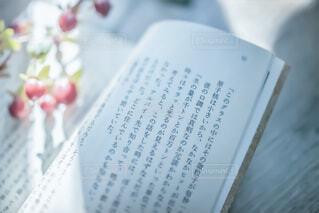 のんびり読書の写真・画像素材[3692224]