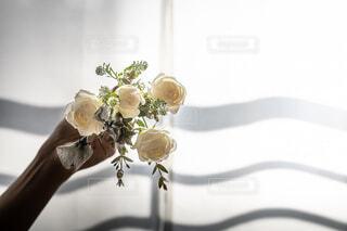 窓からの光とバラの写真・画像素材[4414819]