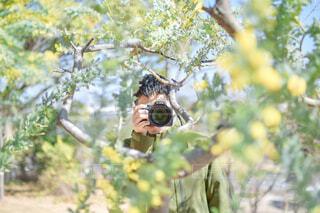 木に囲まれるカメラマンの写真・画像素材[4350157]