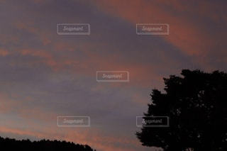 空の雲の写真・画像素材[3397286]