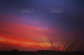 日没時の都市の眺めの写真・画像素材[3397285]