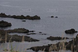 水の体の隣にある岩の海岸の写真・画像素材[3545004]