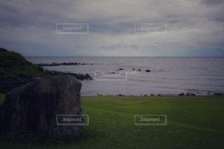 水の体の隣の緑豊かな畑に立っている人の写真・画像素材[3545001]