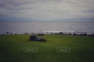 水の体の隣の緑豊かな畑に立っている人の写真・画像素材[3545002]
