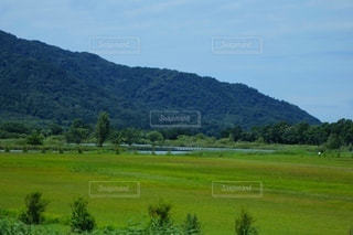 背景に山のある大きな緑の畑の写真・画像素材[3575098]