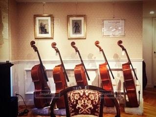 弦楽器の写真・画像素材[3378609]
