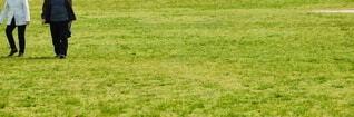 緑の芝生で散歩しているシニア男性の写真・画像素材[4847112]