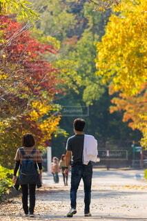 紅葉の綺麗な公園で散歩している若い夫婦の写真・画像素材[4856146]