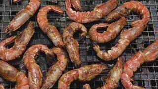 食べ物,夏,動物,食事,季節,フード,グリル,美味しい,バーベキュー,エビ,焙煎,熱々,魚介類,串,ファストフード,車海老,飲食,海老焼き