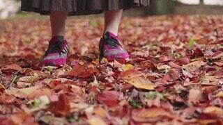 秋の公園の落ち葉の地面に歩く女性の写真・画像素材[4898103]