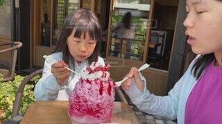 家族,食べ物,風景,夏,食事,窓,子供,女の子,少女,フード,楽しい,テーブル,人物,大きい,人,座る,可愛い,アイスクリーム,日本,店,幼児,美味しい,夏休み,かき氷,兄弟,姉妹,冷たい,飲食,酪農,鮮やかな,人間の顔