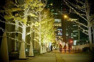 風景,建物,カメラ,夜,夜景,屋外,大阪,綺麗,アート,樹木,イルミネーション,都会,ライトアップ,旅,イベント,クリスマス,照明,デザイン,ツリー,Snapmart,お洒落,通り,モニュメント,グランフロント,ラグジュアリー,銀杏並木,アンバサダー,オススメ,クリスマスイルミネーション,街路灯,風景写真,空間デザイン,PR,シャンパンゴールド,クリスマス ツリー,グランフロントクリスマス,Grand Wish Christmas 2020,グランフロント大坂,グランフロント大坂アンバサダー,グランフロント 北館,@grand.front.osaka,fujifilm_x_s10