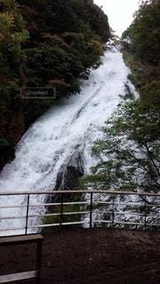 日光 湯滝の写真・画像素材[3381149]