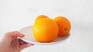 食べ物,夏,冬,黄色,オレンジ,手持ち,白い,白い皿,果物,皿,人物,ポートレート,お皿,3つ,オレンジ色,橙,ライフスタイル,手元,柑橘類,皮,橙色,3個,柑橘系,白いお皿,ネーブルオレンジ,バレンシアオレンジ