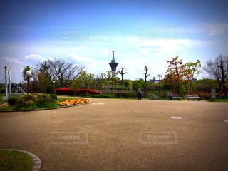 自然,公園,花,春,大阪,大阪市,大阪府,まゆ写,鶴見,鶴見緑地公園,鶴見緑地,花博,鶴見区,命の塔