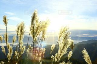 山頂からのご来光の写真・画像素材[3821584]