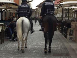 後ろ姿,人物,背中,人,後姿,馬,街中,警察,スロベニア,ゆか写,リュブリャナ