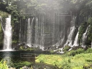 森の中の大きな滝の写真・画像素材[3398191]