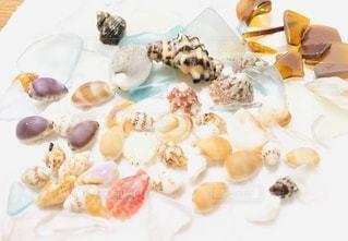 皿の上の貝殻の写真・画像素材[3405382]