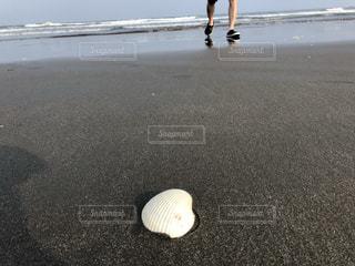水域の近くのビーチに立っている人の写真・画像素材[3544361]