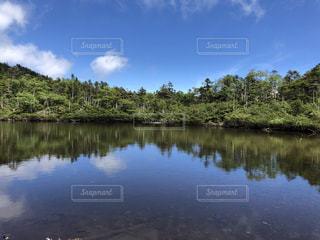 木々に囲まれた水の体の写真・画像素材[3589297]