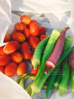 食べ物,風景,カラフル,トマト,野菜,ミニトマト,食品,オクラ,美味しい,新鮮,畑,食材,採れたて,フレッシュ,ベジタブル