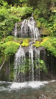 自然,夏,屋外,緑,水,川,水面,山,滝,樹木,苔,岩,涼しい,癒し,雫,マイナスイオン,渓谷,冷たい,流れ,草木,北杜市