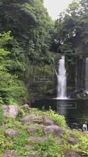 自然,夏,森,緑,曇り,水面,山,滝,苔,岩,涼しい,癒し,雫,マイナスイオン,渓谷,冷たい,渓流,白糸の滝,日中,溶岩,伏流水