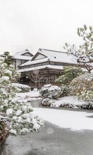 冬,雪,冬景色,池,庭園,長府,長府庭園