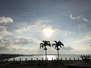 沖縄の海の写真・画像素材[3589711]