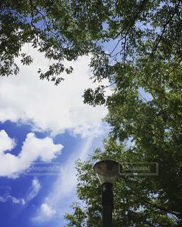 空の写真・画像素材[142261]