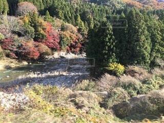 秋の山川の写真・画像素材[3722037]