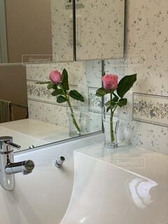 鏡の前に花を持つ花瓶がカメラのポーズをとるの写真・画像素材[4335184]